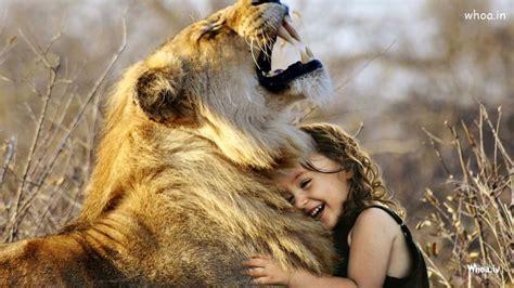 cute child girl playing  lion photoshoot hd wallpaper