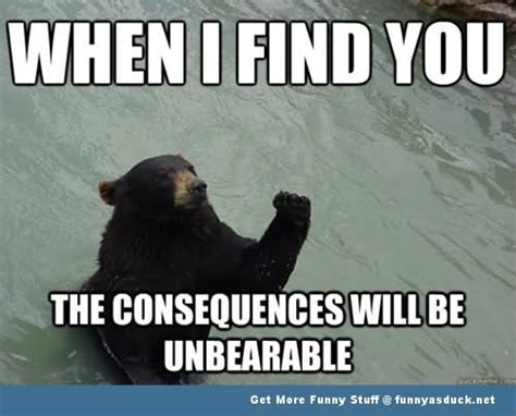 Confession Bear Meme