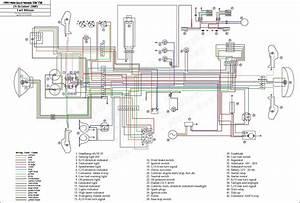 Yamaha Timberwolf Engine Wiring Diagram Yamaha Timberwolf