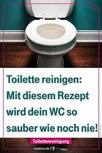 Küchenschränke Reinigen Hausmittel : to have a fresh clean toilet all you need is this saubere toiletten backofen reinigen ~ A.2002-acura-tl-radio.info Haus und Dekorationen