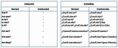 Interrogative Verb Form Negative Worksheet Pronombre Exercises