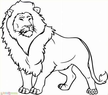 Singa Gambar Mewarnai Untuk Tk Paud Dan