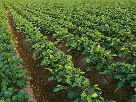 chambre d agriculture 12 agrimieux à loos en gohelle le de jean françois caron