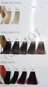 Types Chart Goldwell Nectaya Color Glamot Com