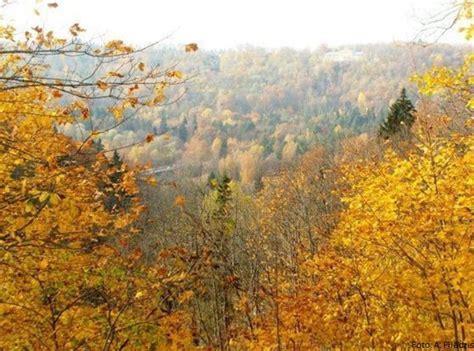 Skaistākās rudens ainavas Latvijā   VIASMS.LV