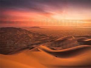 Andreas Wonisch Sonnenuntergang in der Wüste Poster online