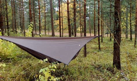 Hammocks Backpacking by The 10 Best Cing Hammocks Of 2016 A Buyers Guide