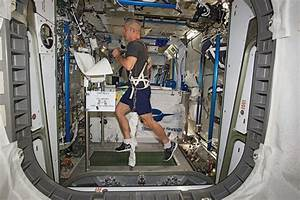 Train Like An Astronaut - Your Optimum Fitness