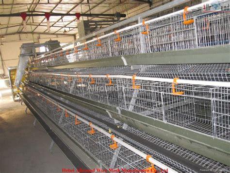 auto poultry farm equipment allround china manufacturer