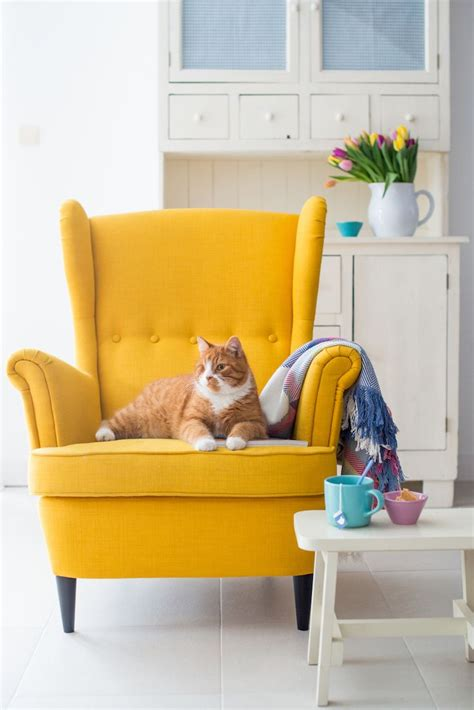 25 best ideas about yellow chairs on yellow