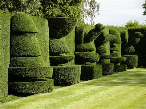 Topiary : The Garden At Levens Hall