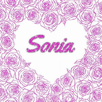 Glitter Sonia Text Uploaded Category