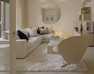 Tapis A Poils Long : nettoyer un tapis a poils longs nettoyage de tapis ~ Teatrodelosmanantiales.com Idées de Décoration