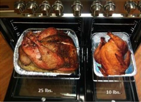 how to fry a 20 pound turkey cooking a turkey frequently asked questions