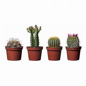 IKEA garden suggestions   Home Designs Project