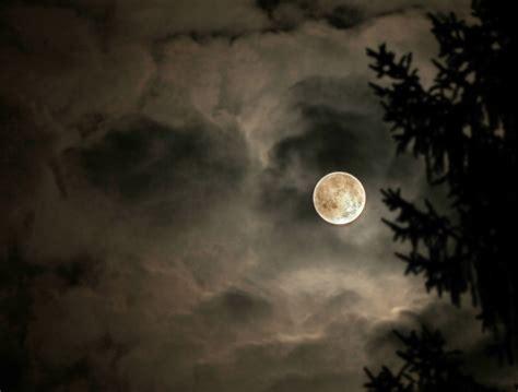 mondnacht forum fuer naturfotografen