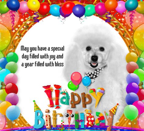 Birthday Card Image by A Birthday Card For Your Pet Free Pets Ecards
