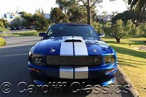 2008 Used Shelby GT350 Automatic at Cardiff Classics Serving Encinitas, IID 6990211