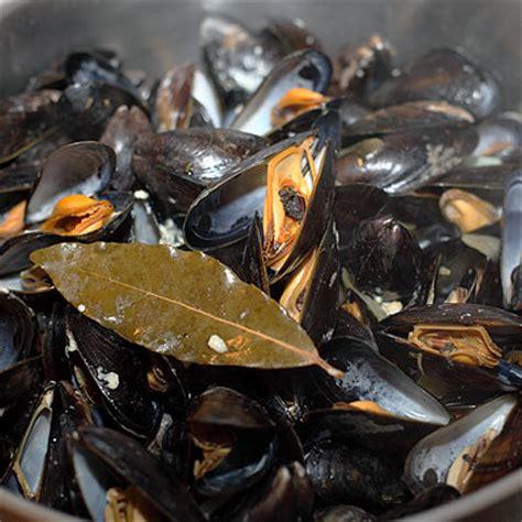recette moules marinieres simplement cuisine