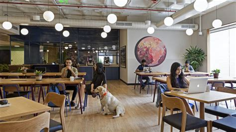 India's co-working startups set for shakeup: WeWork enters