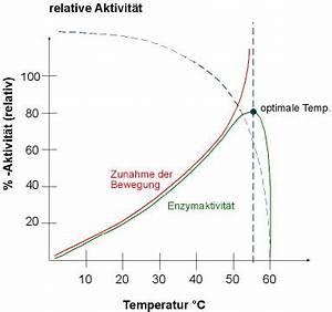 Ph Wert Berechnen Aufgaben Mit Lösungen : einflussfaktoren in der enzymregulation ~ Themetempest.com Abrechnung