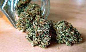 weed good for health