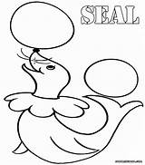 Seal Coloring Pages Colorings sketch template