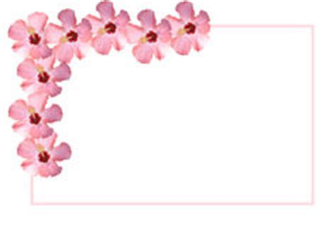 fancy  tag  white background stock photo image