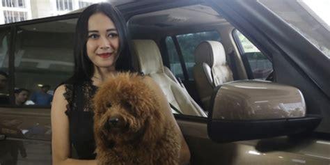 Aura Kasih Punya Anjing Lucu Yang Mirip Banget Sama Boneka
