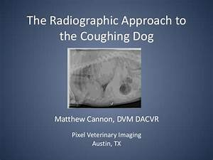 The Radiographic Approach to the Coughing Dog