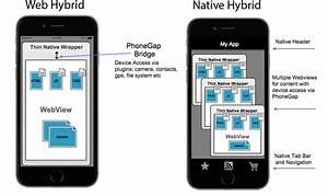 Embedding The Webview PhoneGap Docs