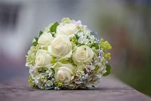Blumen Bedeutung Hochzeit : hochzeitsblumen und ihre bedeutung wussten sie dies ~ Articles-book.com Haus und Dekorationen