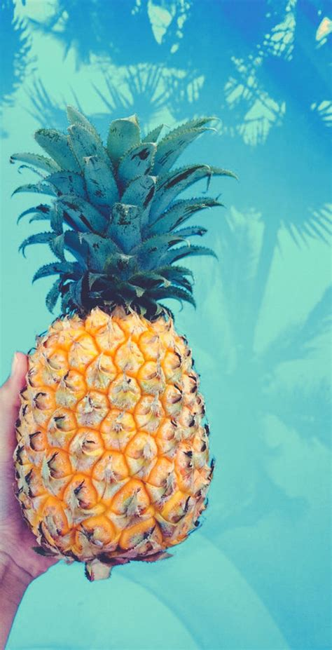 pineapple pictures   images  facebook
