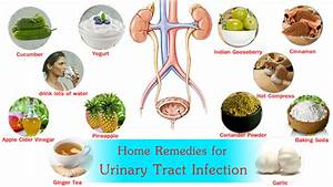 5 Home Remedies For Utis