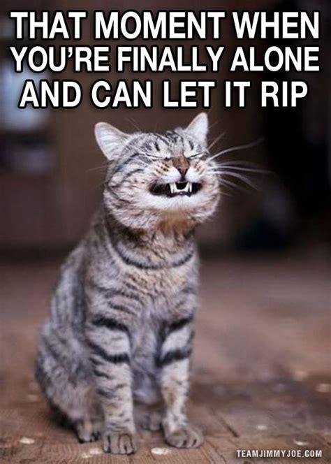 ways  laugh funny pics memes team jimmy joe