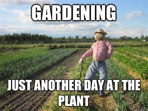 Gardening Memes - gardening just another day at the plant scarecrow quickmeme