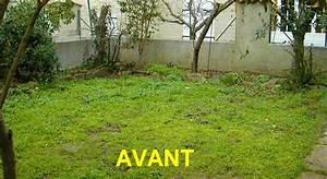 Jardin Deco Exterieur : idee amenagement de jardin elephant deco jardin djunails ~ Nature-et-papiers.com Idées de Décoration