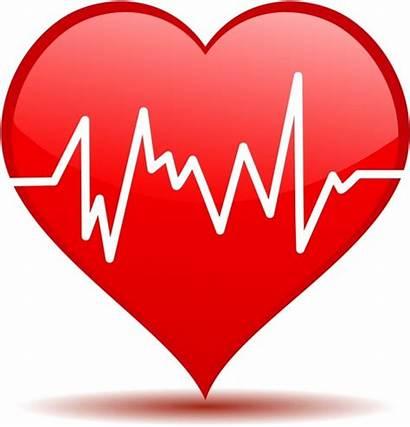 Heart Heartbeat Beat Clipart Beating Vector Hearts