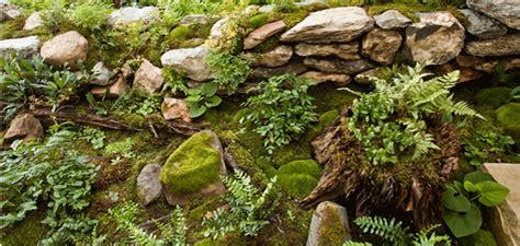 gardening moss shade gardens keystone gardens