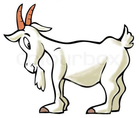 angus  tartan goat mfw