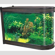 Desktop Aquariums Manufacturers & Suppliers  Desktop