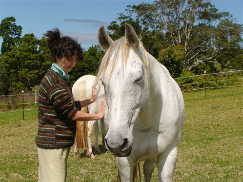 horse human training therapy receiving giving gift