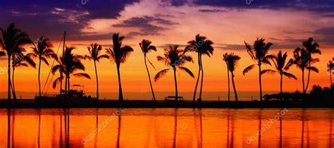 beach paradise sunset stock photo  maridav