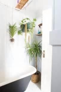 decorative bathroom ideas best plants that suit your bathroom fresh decor ideas