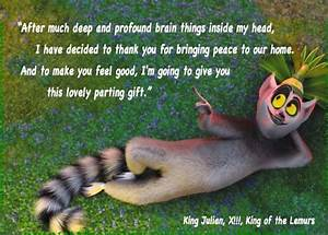 """""""After muc... Cute Lemur Quotes"""