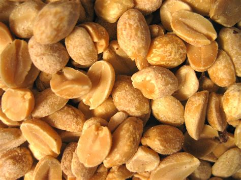 To Prevent Peanut Allergy Risk Feed Infants Peanuts Early
