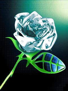 Animated The Rose Blackberry Wallpapers 240x320 Phone Hd