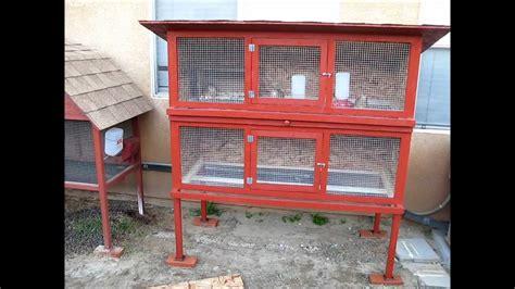 quail hutches quail cage