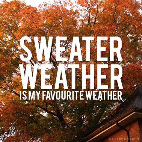 sweater weather sweater weather forever let 39 s be here