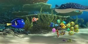 Findet Nemo Dori : erster trailer findet nemo 2 findet dory 2016 ~ Orissabook.com Haus und Dekorationen